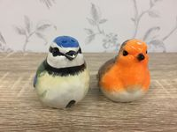 British Birds Robin & Blue Tit Bird Salt & Pepper Shaker Cruet Set